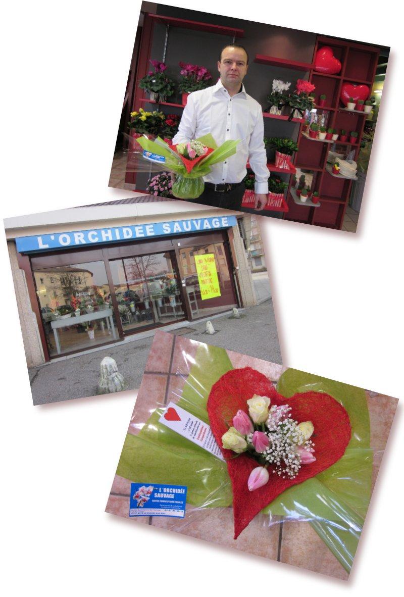 Merci  à notre partenaire l'orchidée sauvage, rue du Cuvion 57000 METZ