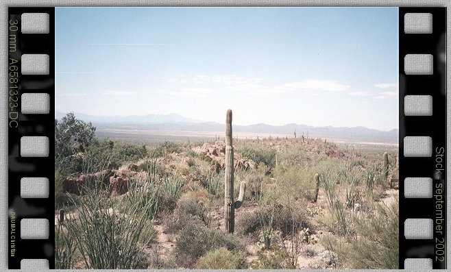 State: Arizona  ---Town: Tucson the beautiful country