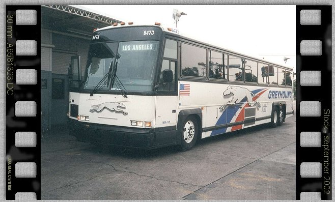 Un des bus  de la Greyhound